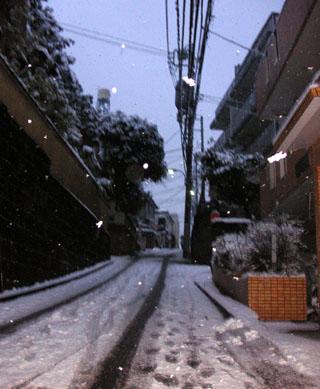 tokyo-yuki