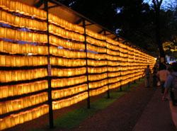 yasukuni-hikari