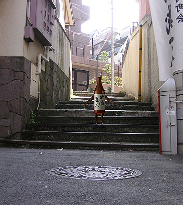 Seijinarakicho