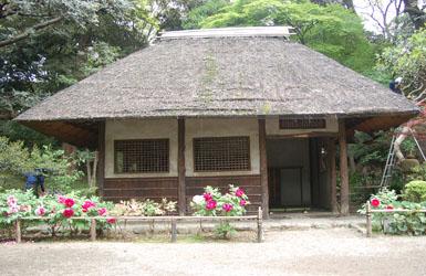 Koishikawa5