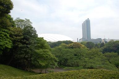 Koushikawa6
