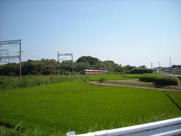 Saidaijikara
